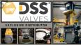 Van DSS giải pháp không rò rỉ cơ học và hóa học ứng dụng cho ngành công nghiệp nặng