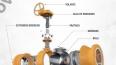 Cấu tạo valve ball trunnion - Walworth